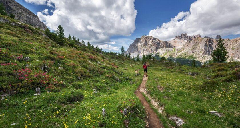 Come diventare guida ambientale: formazione e normative